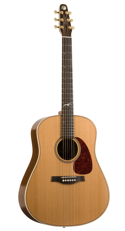 Best Acoustic Guitar (under $1000)