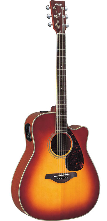 Best Acoustic-Electric Guitar (under $500)